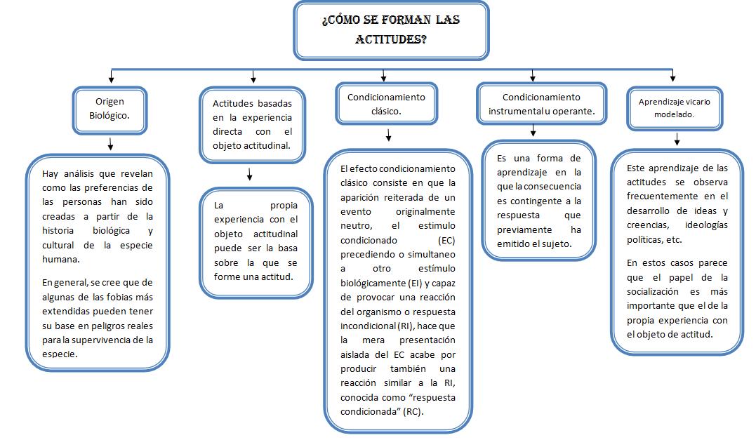 estructura mental mapa